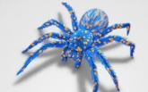Name:  BlueSpider.JPG