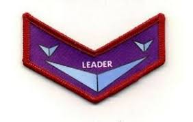 Name:  Starmaster_Leader_patch.jpg