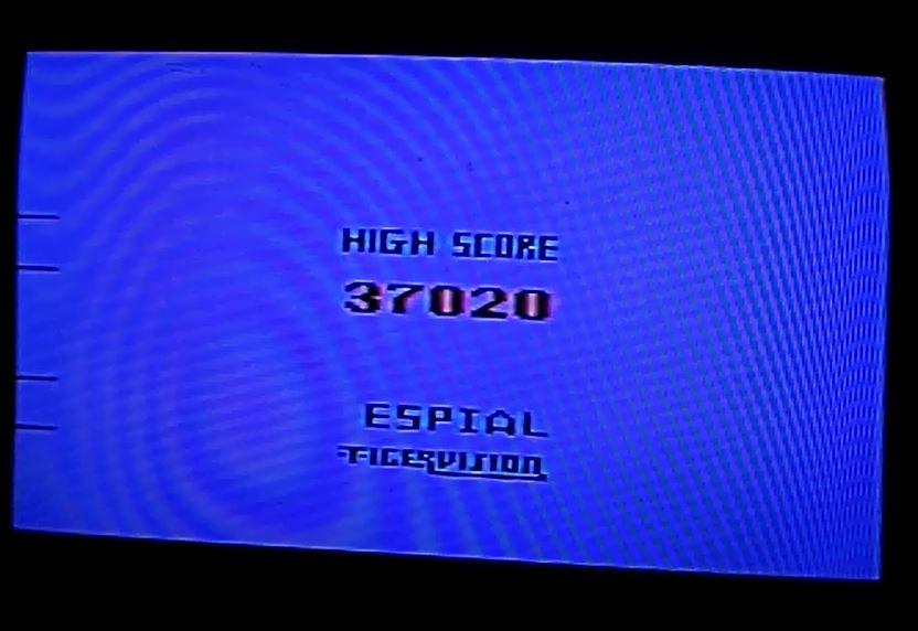 Name:  Espial_37020.JPG Views: 37 Size:  56.9 KB