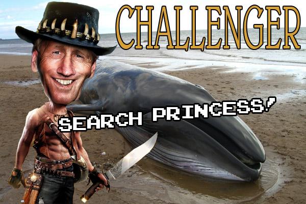 Name:  Challenger.jpg Views: 80 Size:  125.3 KB